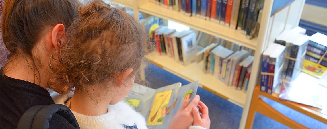 Consultation sur place bibliothèque de Montluel